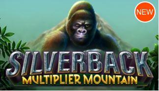 SILVERBACK MULTIPLIER MOUNTAIN ☆5